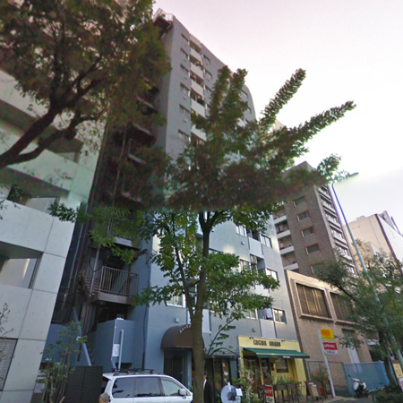 ニューライフ新宿東 概観