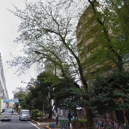 ロイヤルパレス高井戸 概観